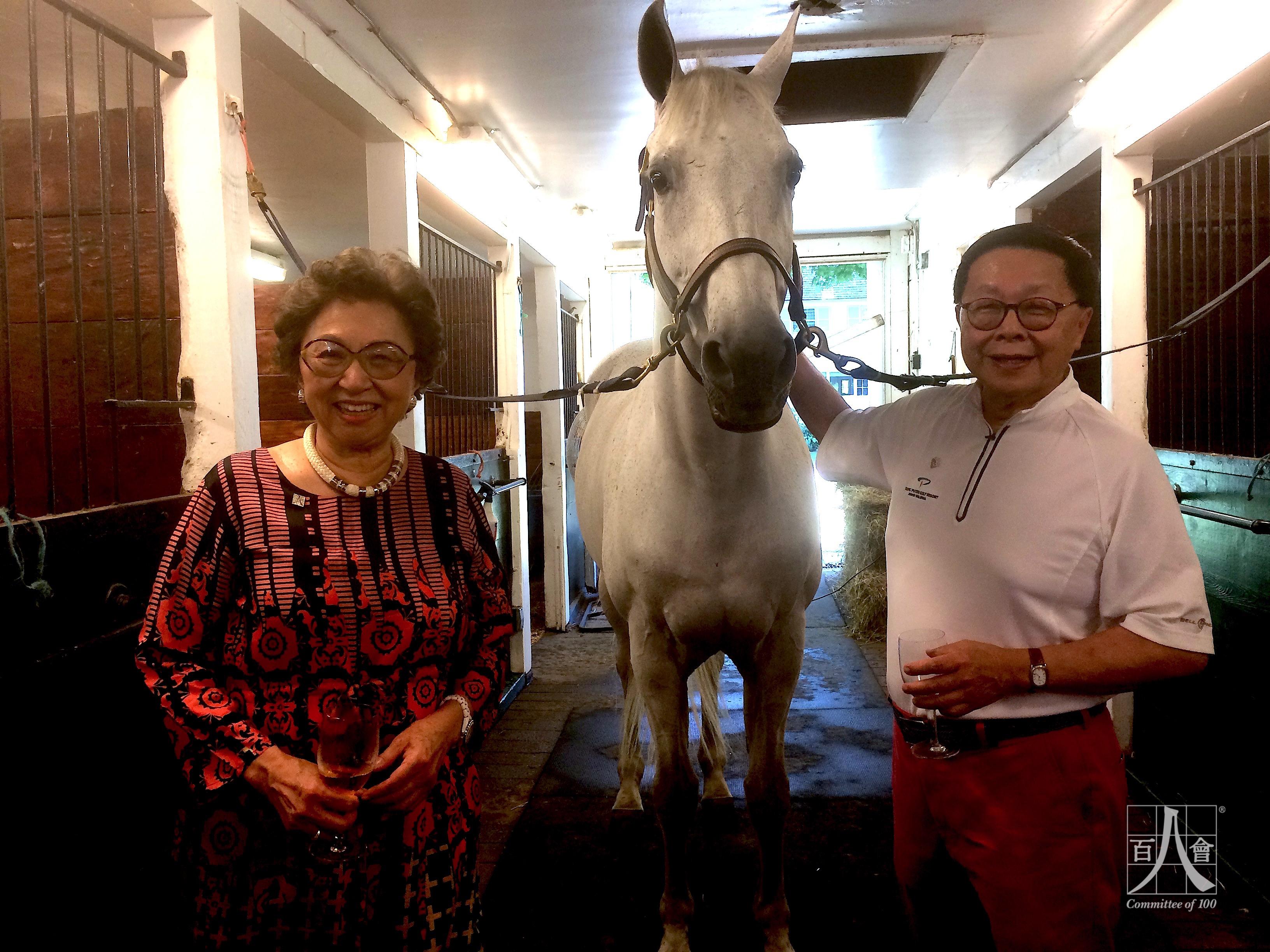 IMG_7292 ShirleyYoung HenryTang Horse